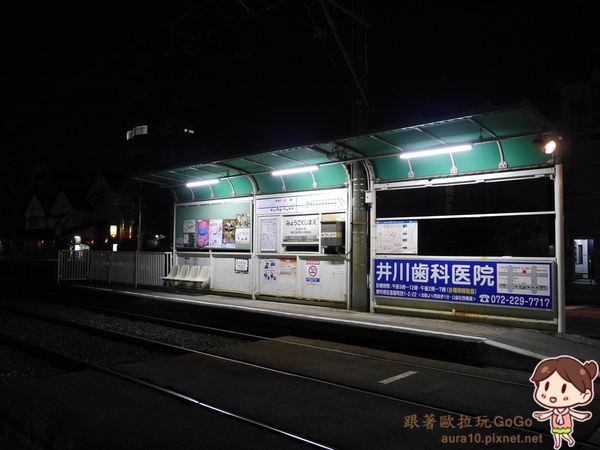 P9550453.jpg