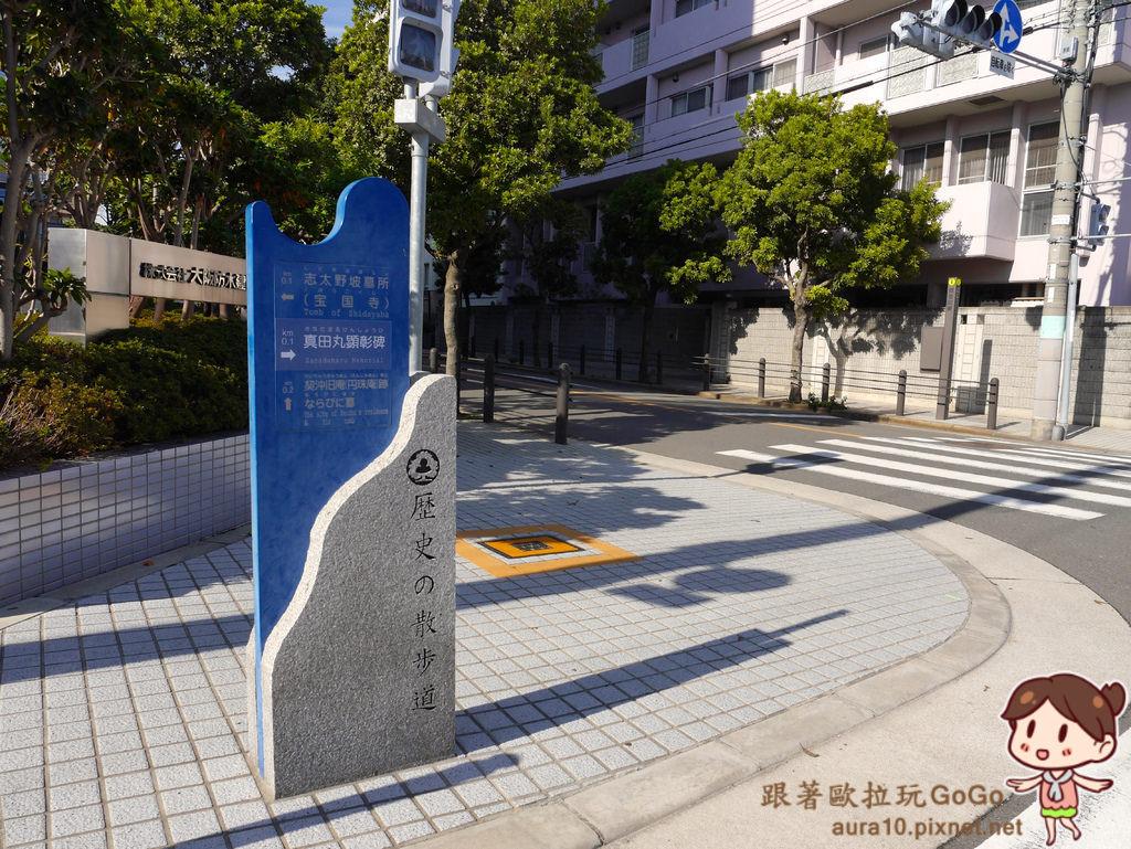 P9840596.jpg